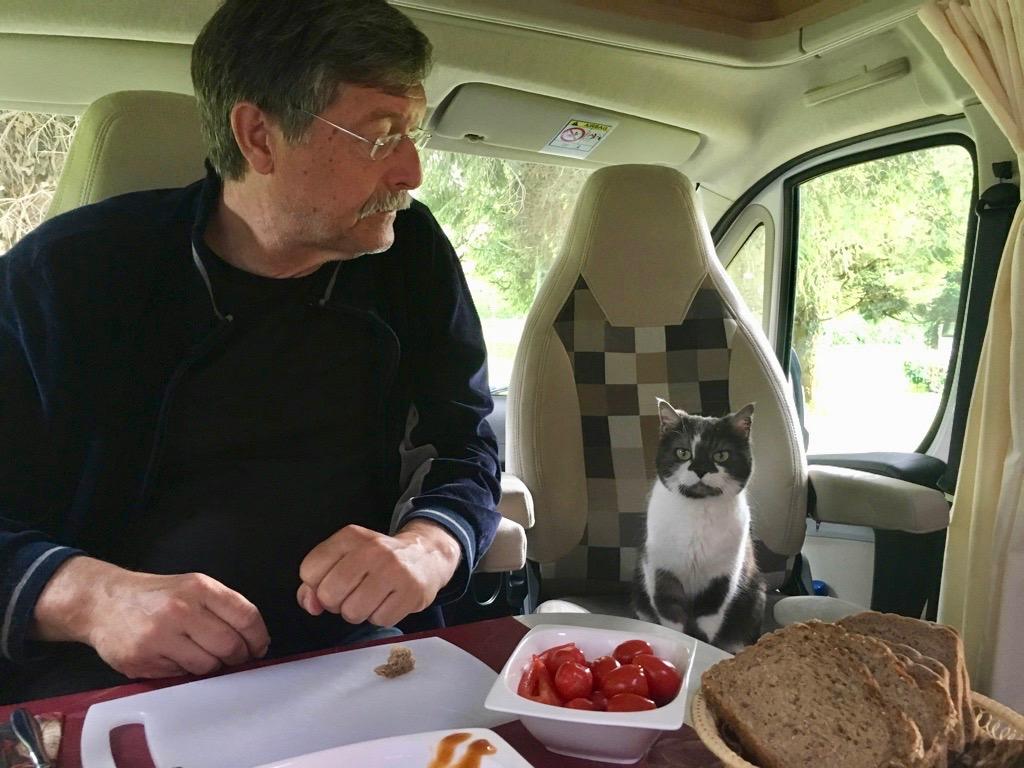 """Frühstückspause mit """"Herrchen"""""""