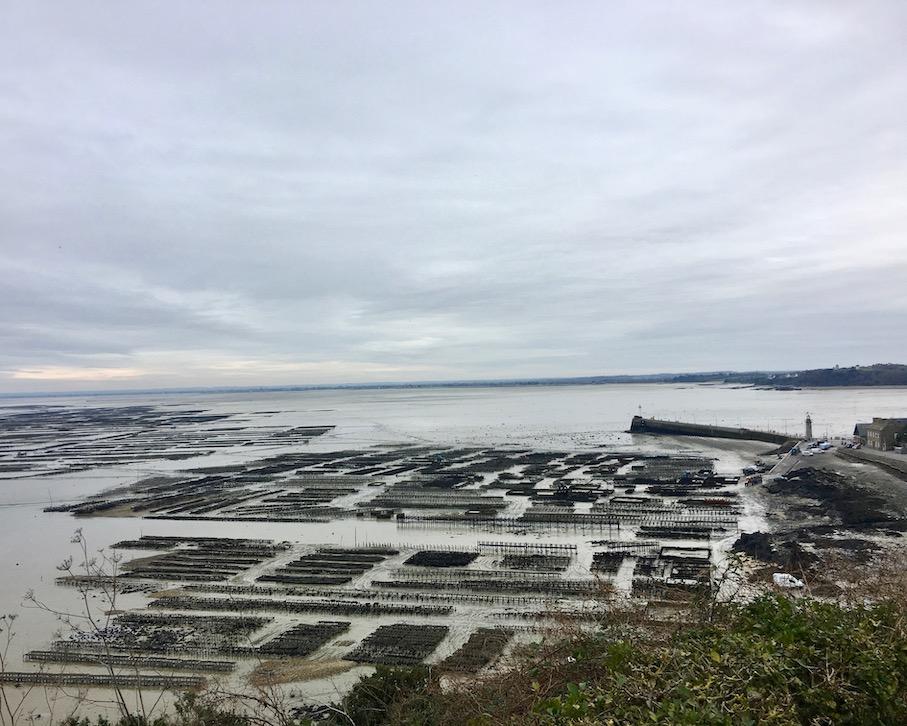 Austernbaenke vor Le Hock Cancale Bretagne