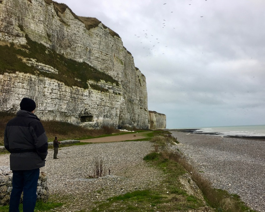Steilküste Kreidefelsen in Saint Valery-en-Caux Normandie Frankreich