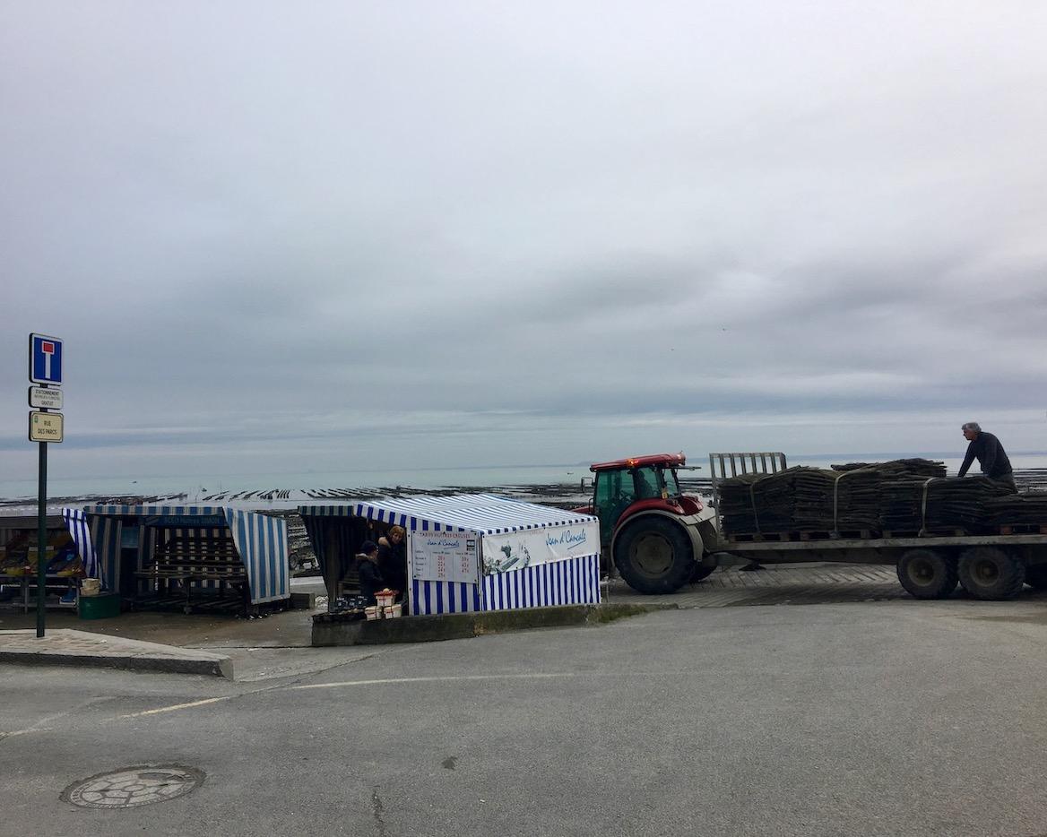Auffahrts-Rampe der Austernfischer Cancale Bretagne Frankreich