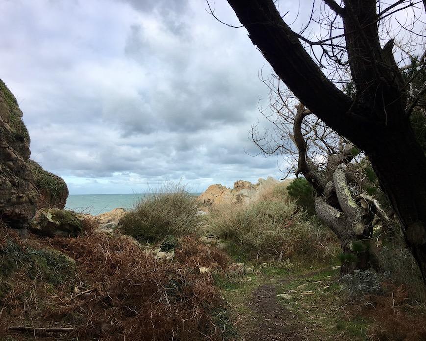 Verwunschener Küstenpfad La-Côte-de-Granit-Rose  Plougrescant Bretagne Frankreich Rosa-Granitküste