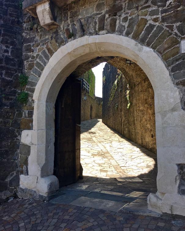 Winsteria BlauregenLetztes Schlosstor zurm Schloss von Görz