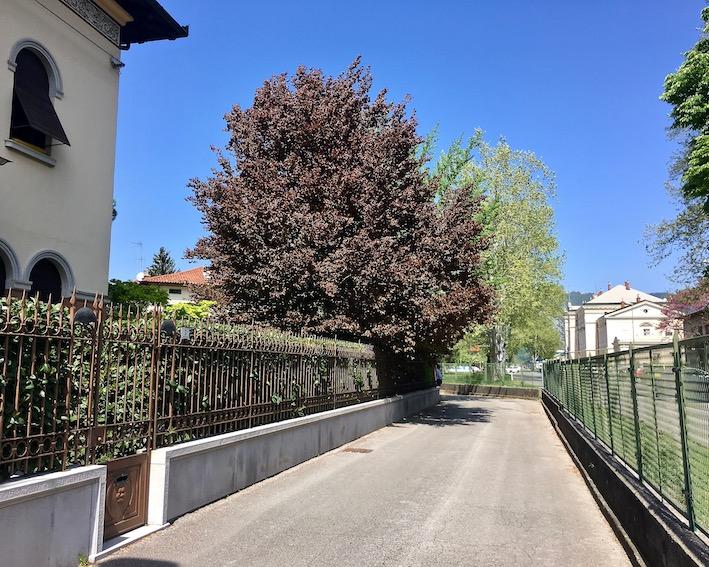 Zur Piazza della Transalpina