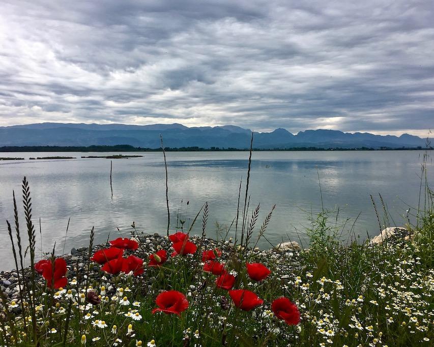 moBlick in die Laguna e Patokut Albanien