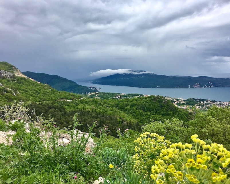 Panorama Herceg-Novi über der Bucht von Kotor
