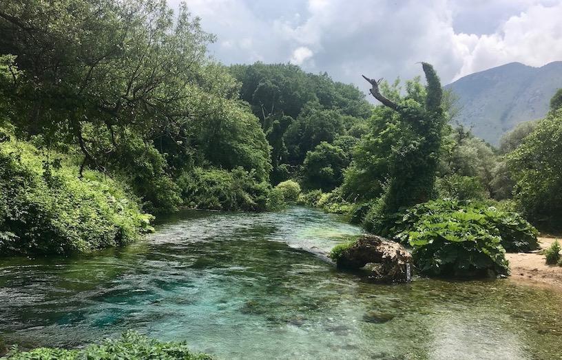 Syri i Kaltër Blaues Auge Bergsee Karstquelle in Albanien Blaues Auge Syri i Kalter mit Urwald in Albanien