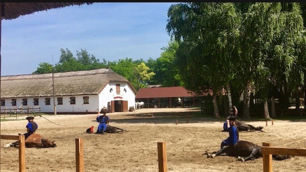 Puszta Steppe Csikós im Nationalpark Ungarische Post in Tanyacsárda Csikós bei der Pferdedressur in Ungarn