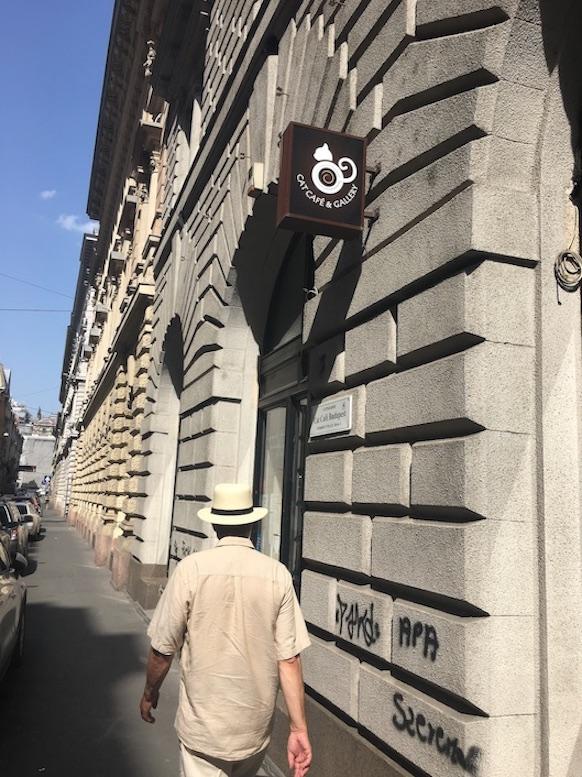 Budapest Donau Ungarn Stadt der Brücken Sehenswürdigkeiten Eingang zum Cat-Cafe Budapest Ungarn