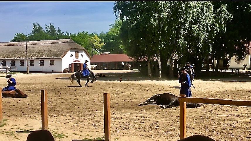 Puszta Steppe Csikós im Nationalpark Ungarische Post in Tanyacsárda Pferdedressur in Üj Tanyacsarda Ungarn