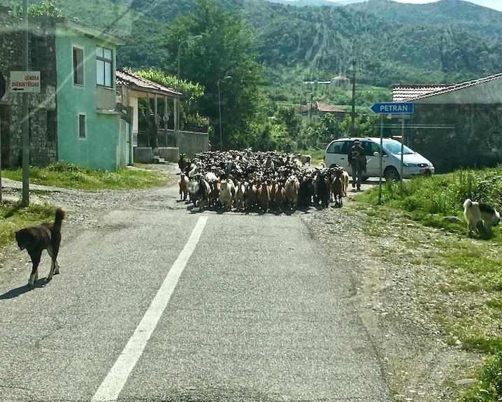 SH75 Albanien 1