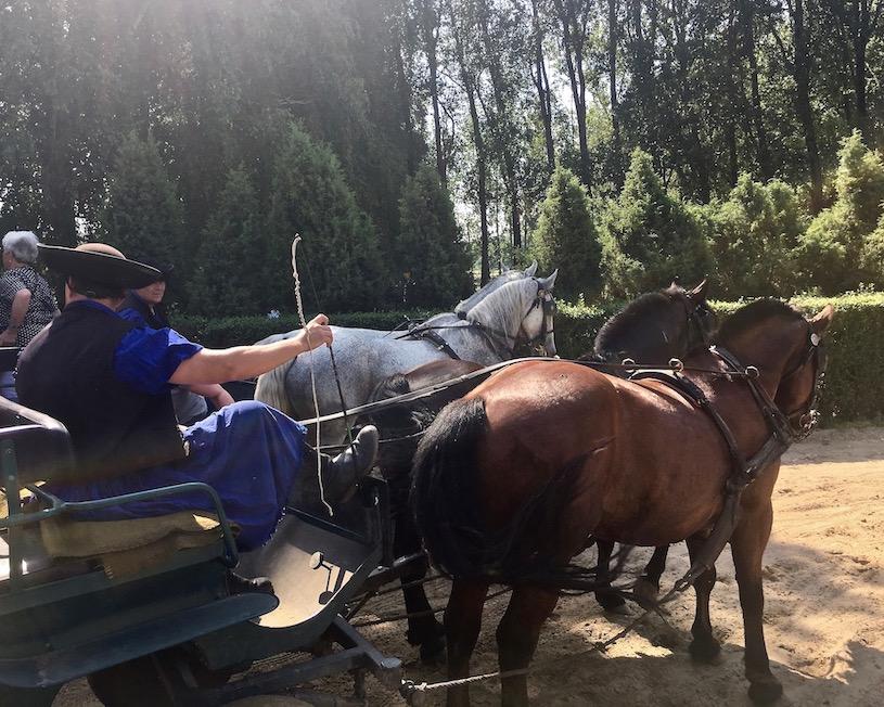Start zur Kutschfahrt in Üj Tanyacsarda Felsölajos Ungarn