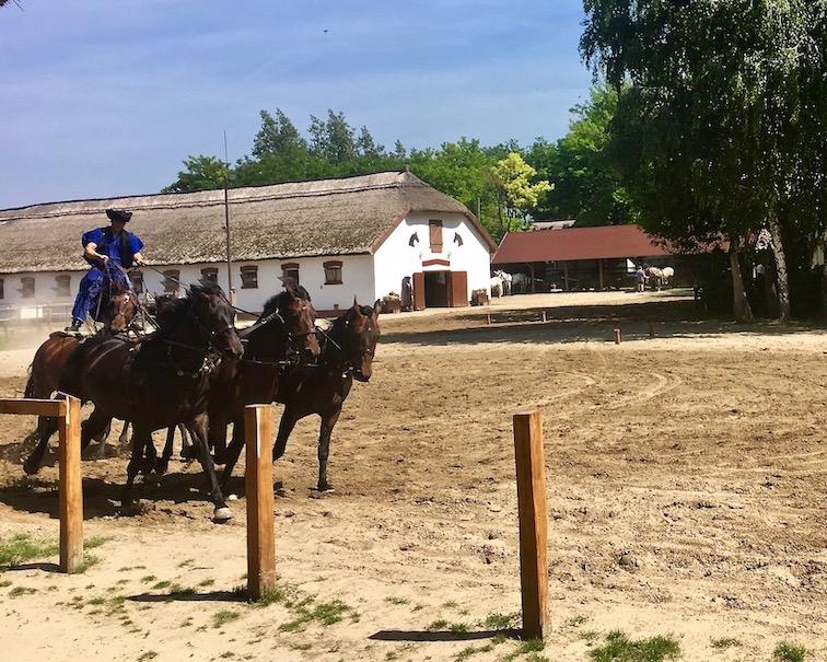 Puszta Steppe Csikós im Nationalpark Ungarische Post in Tanyacsárda die Ungarische Post kommt in Tanyacsarda Ungarn