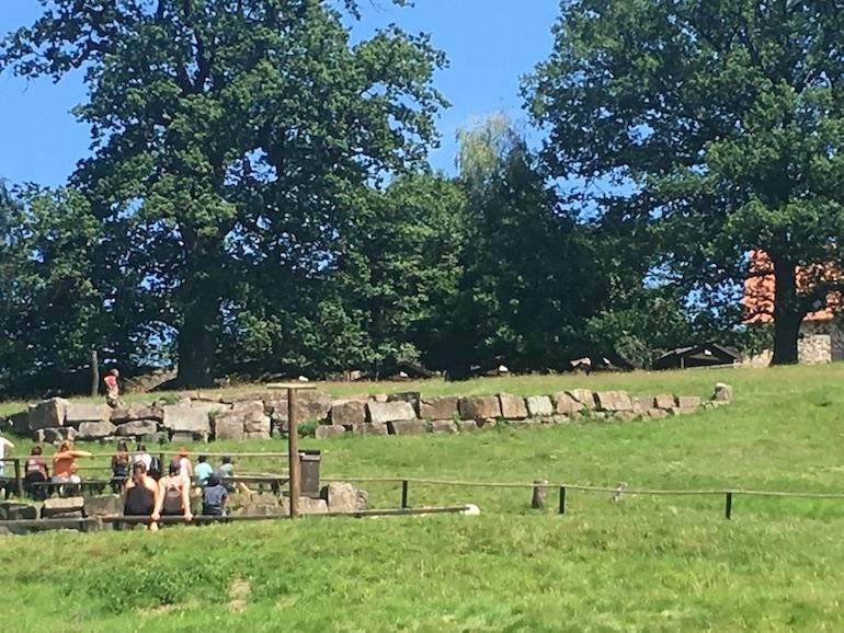 Sababurg Tiergarten Start der Greifvogelschau