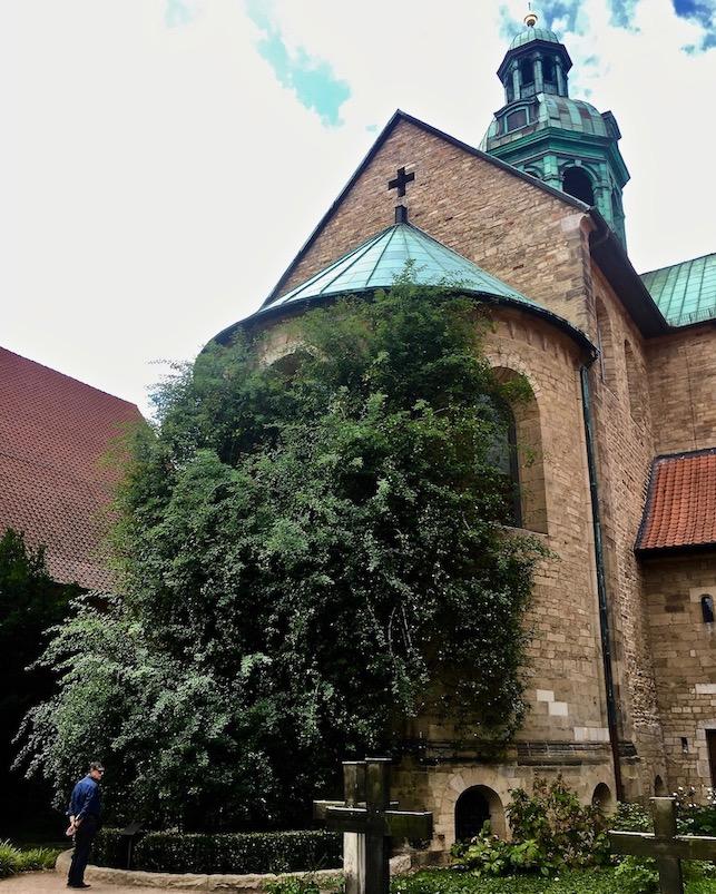 Hildesheimer Dom Weltkulturerbe Ost-Apsis mit 1000 jähr.Rose Hildesheim Deutschland
