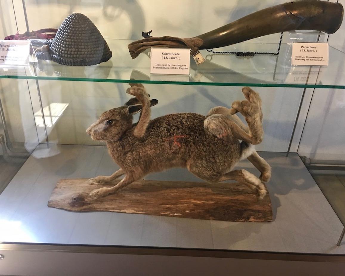 Münchhausen-Museum Achtläufiger-Hase Bodenwerder Weser Deutschland