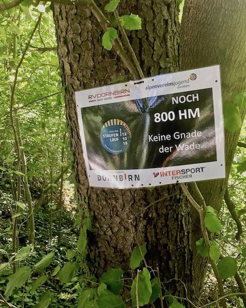 Abstieg vom Karren Österreich