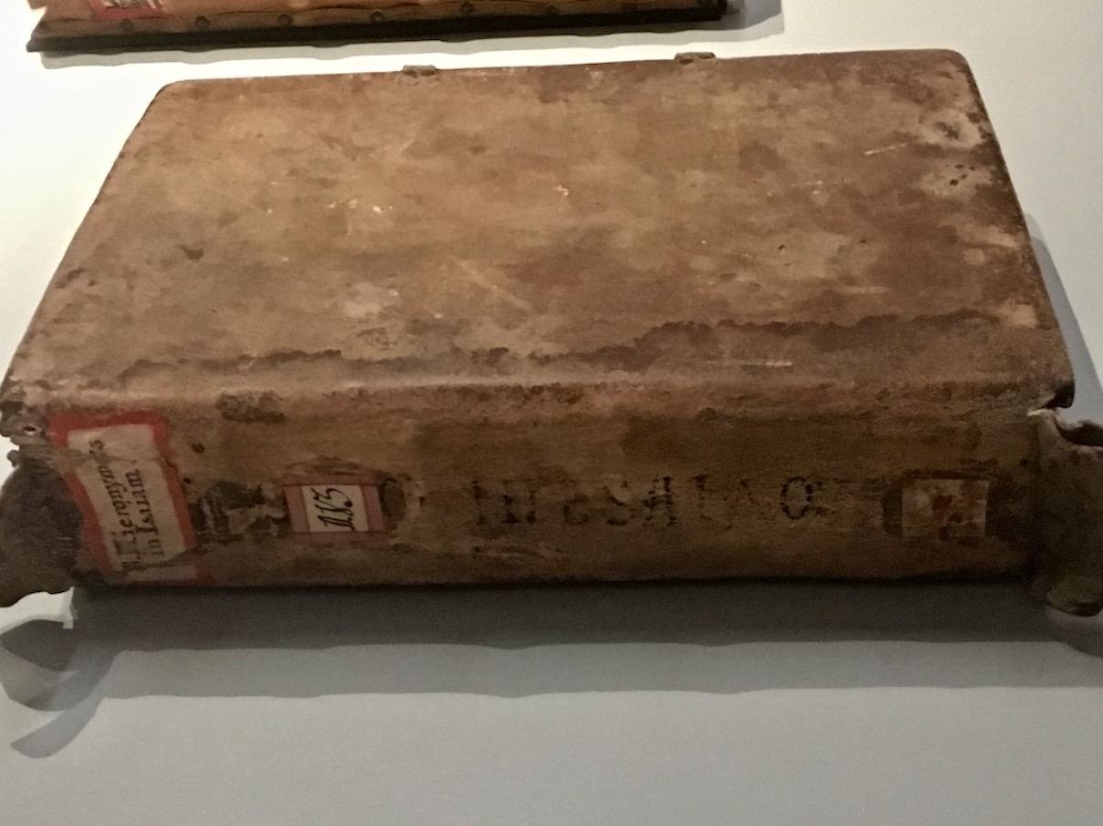 Karolingischer Wildledereinband Rückseite Stiftsbibliothek St.Gallen Schweiz