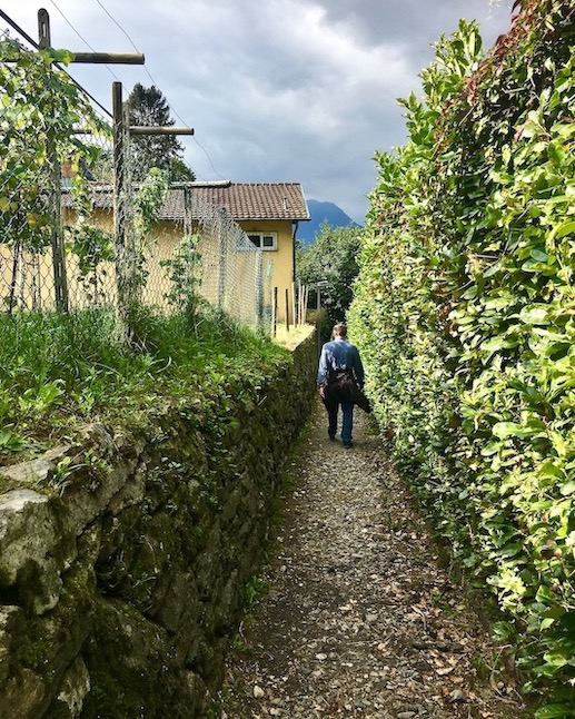 Bellinzona Historische-Altstadt Festungsanlagen UNESCO-Weltkulturerbe Tessin Schweiz Abstieg vom Castello di Sasso Corbaro Bellinzona Schweiz