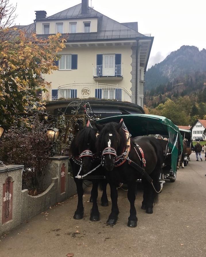 Pferdekutsche zum Schloss Neuschwanstein im Allgäu Deutschland