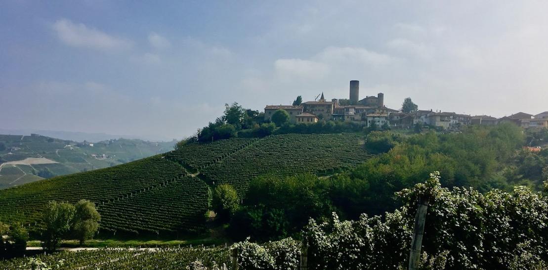 in der Langhe Piemont Italien