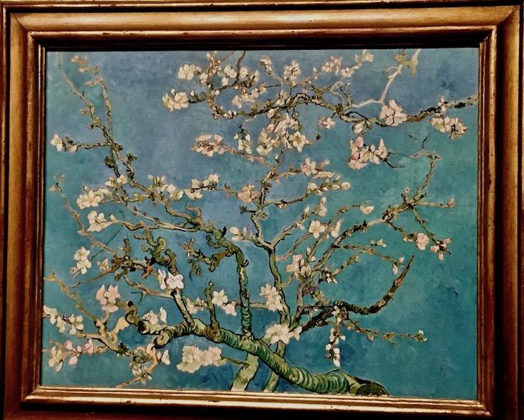 Vincent van Gogh Mandelblüten Van-Gogh-Museum Amsterdam Niederlande