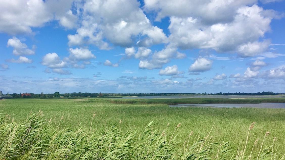 Boddenlandschaft Vogelschutzgebiet bei Zingst Deutschland