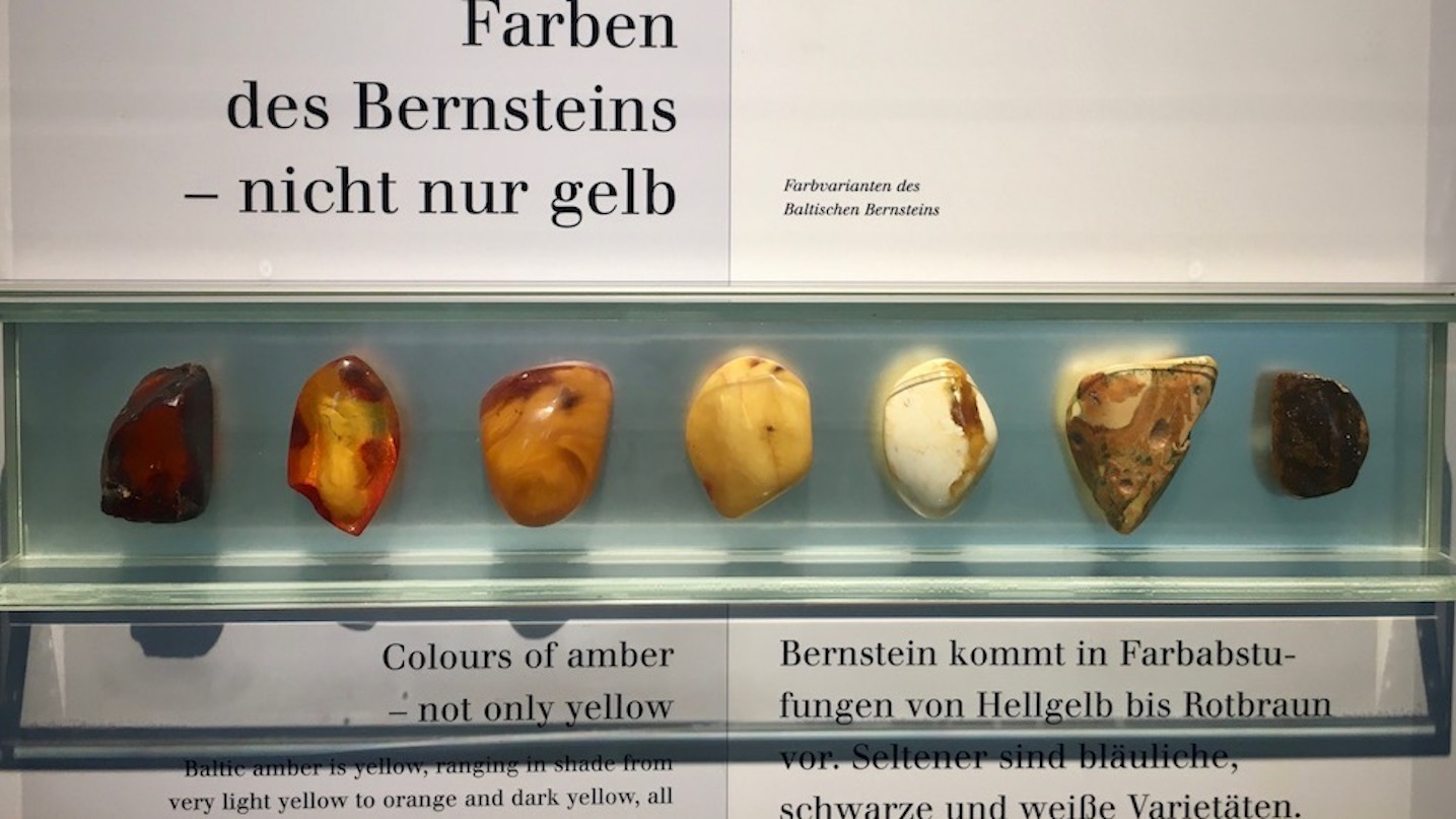 Deutsches Bernsteinmuseum Info