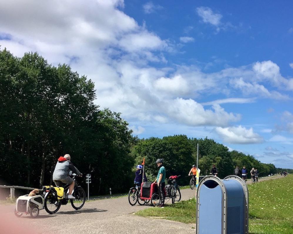 Hundetransport mit dem Fahrrad bei Zingst