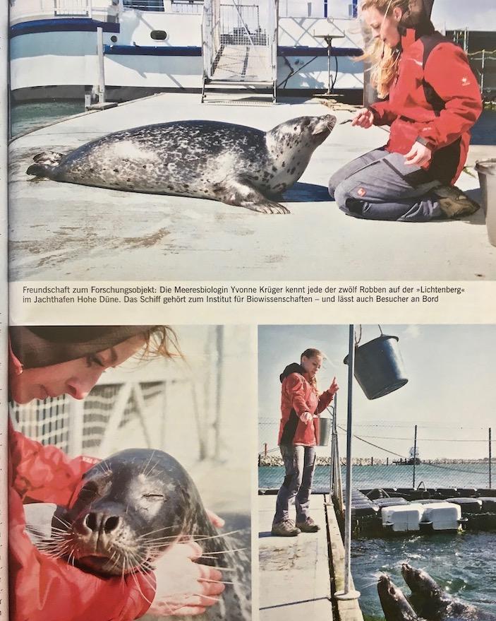Robbenforschungszentrum Warnemünde Zeitungsausschnitt