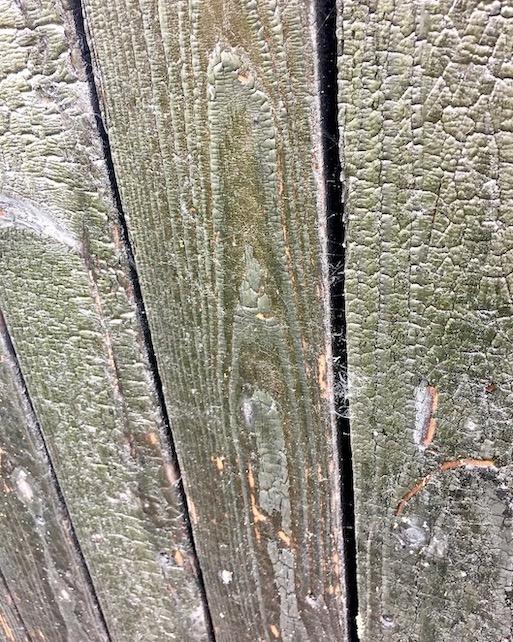 Shou-Sugi-Ban Verkohltes Holz Baumaterial
