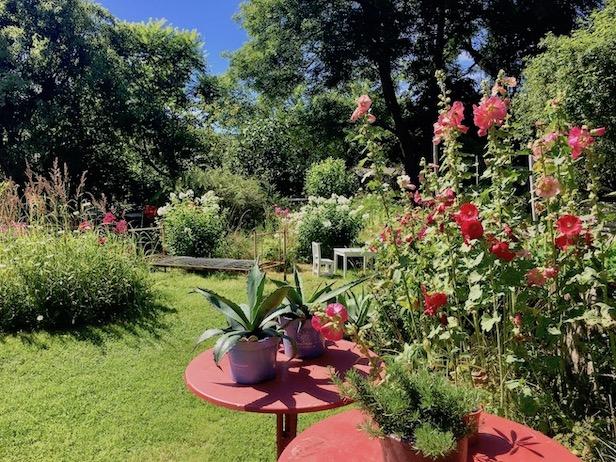 Wiek auf Rügen Blumencafe im Garten