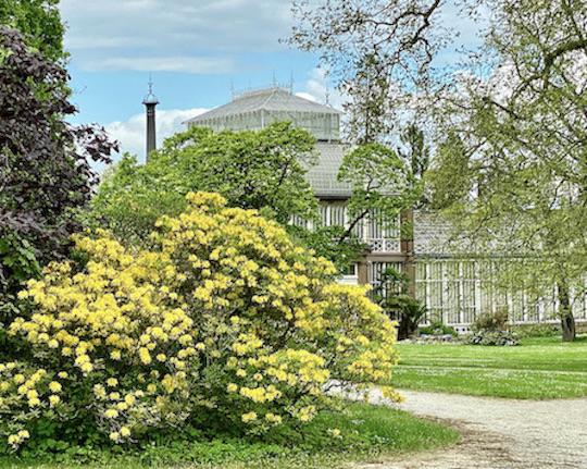 Gewächshaus des Schloß Wilhelmshöhe Bergpark Wilhelmshöhe UNESCO-Weltkulturerbe Kassel Hessen