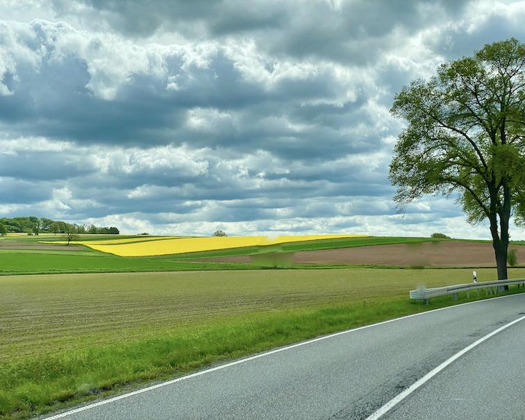 Landschaft in Hessen Hessische-Impressionen mit Rapsfeld