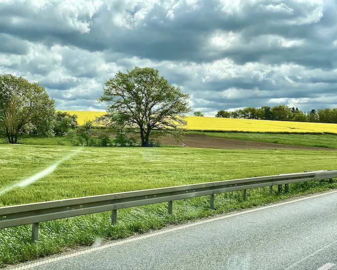 Landschaft in Hessen Naturlandschaft mit Rapsfeld