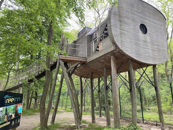 Wolfcenter Dörverden Heulende Wölfe im Tiergehege Baumhaus