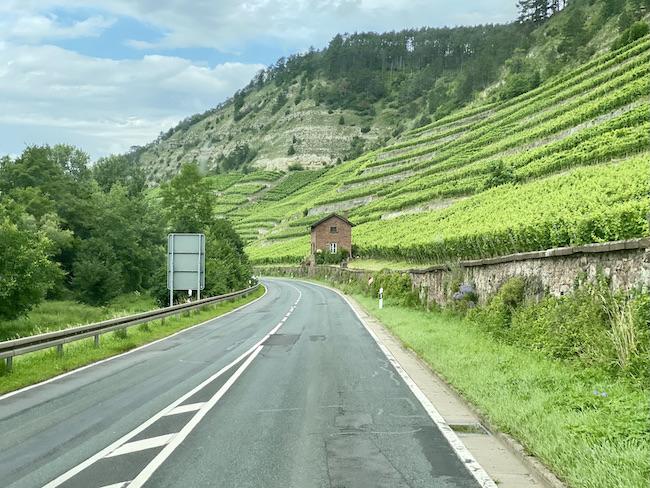 Der Kallmuth am Main Maintrockenhang bei Homburg am Main Weinhänge am Main