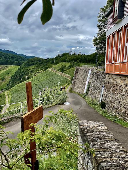 Prinzenkopfturm Aussichtsturm Aussichtspunkt Mosel Moselschleife Pünderich Moselschleife Zell Aufstieg zur Marienburg bei Pünderich entlang Moselsteig Etappe 14
