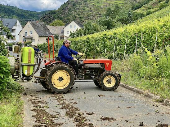 Stadt Alken an der Mosel mit dem Traktor in den Weinberg Rheinland-Pfalz Deutschland