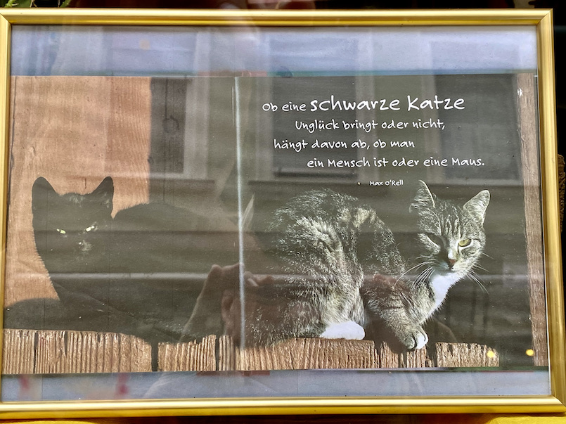 Zeller Schwarze Katz Lebensweisheit